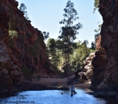 Ellery Creek / Big Hole