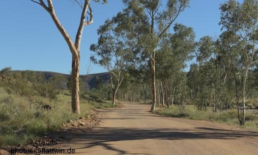 Road to Serpentine Gorge
